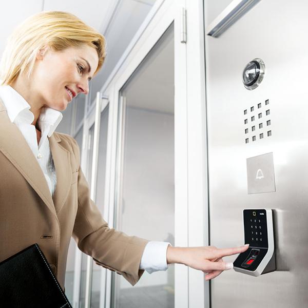 sisteme biometrice de acces